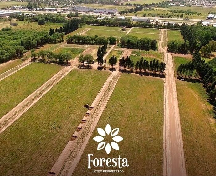 Loteo FORESTA, el lugar que buscabas para vivir.