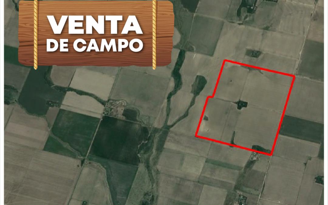 VENTA CAMPO, La Aguada, 87 Ha.